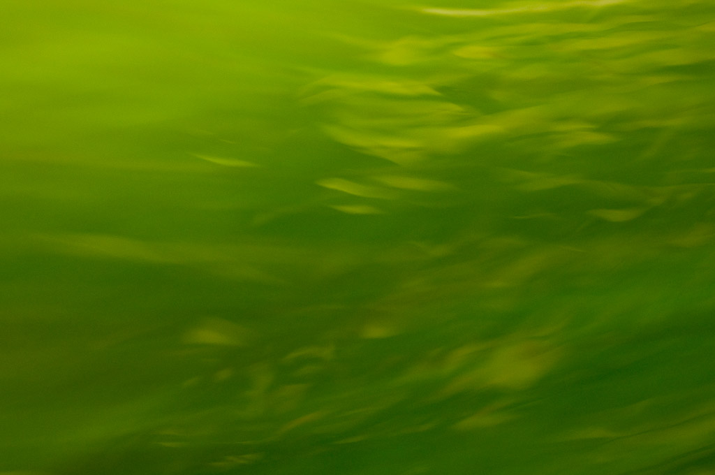 Untitled from Green series