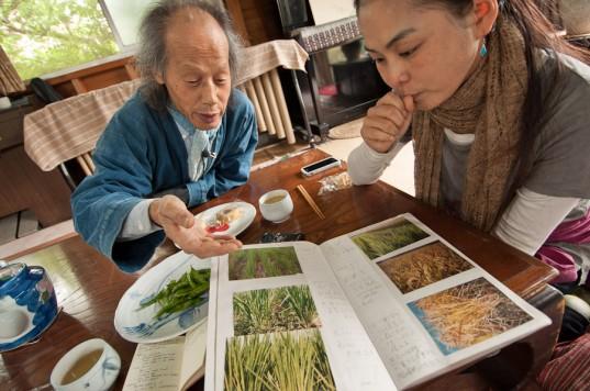 Yoshikazu Kawaguchi explains his rice farming methods at his farm near Nara, Japan (photo: Patrick Lydon)