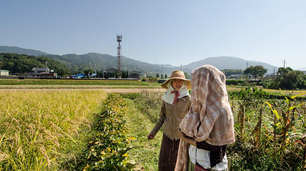 Kaori and Maki at Yoshikazu Kawaguchi's natural rice field in Sakurai, Japan (photo: P.M. Lydon)