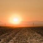 A very dry recently harvested field in California's Central Valley (photo: P.M. Lydon, 2012)