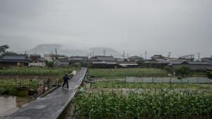 Corn fields behind town | Megijima, Japan