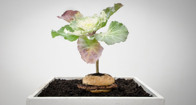 What is Food: The Hunter Gatherer | Installation at TENT Gallery, Edinburgh, UK