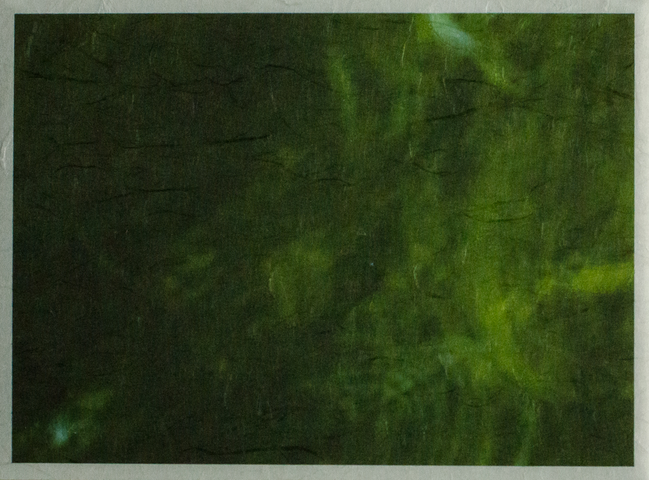 Green, at Yamaguchi Institute of Contemporary Art (YICA), P.M. Lydon