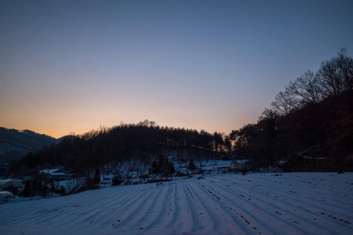 winterspring_PML0329