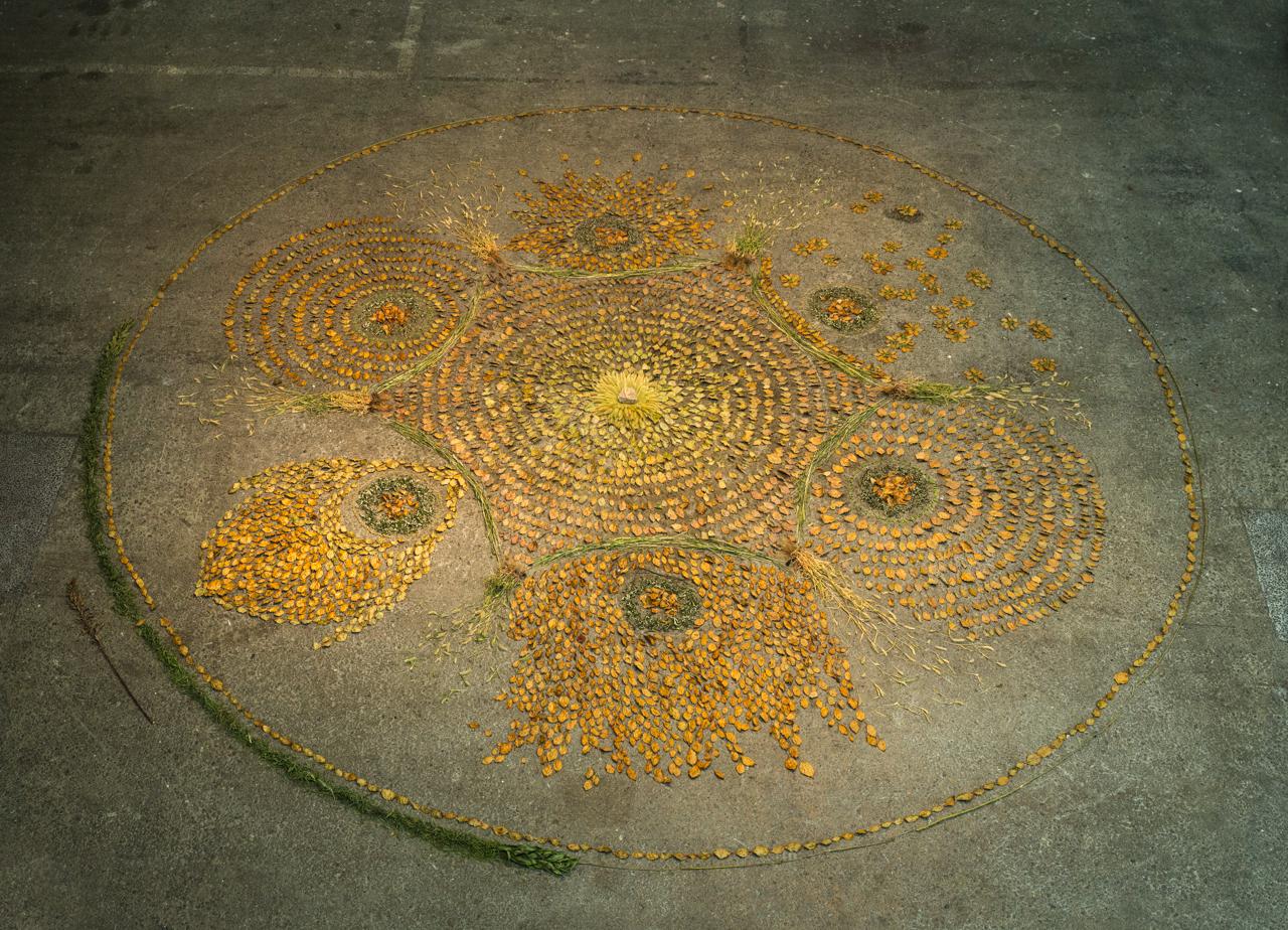 'Osakako Mandala' installation at Contemporary Art Space Osaka, Japan